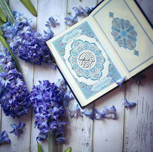 learn quran online for beginners, learn how to read quran for beginners, quran recitation for beginners, learning quranic arabic for beginners